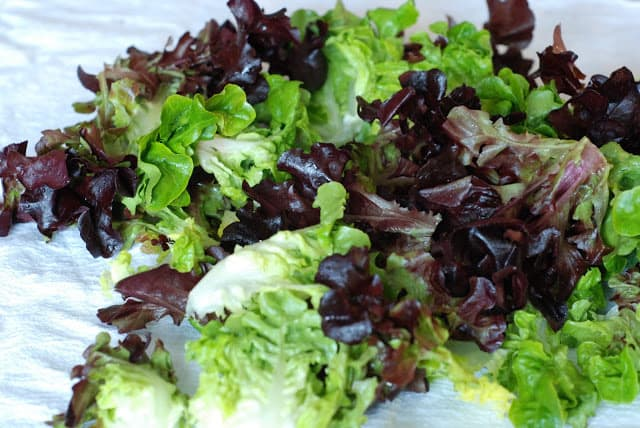 7 4 - Spring Salad with French Vinaigrette and Lemon Garlic Dressings