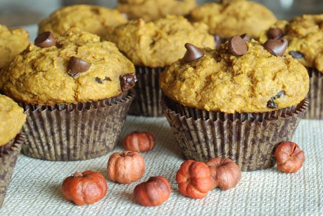 28 5 - Pumpkin Chocolate Chip Muffins