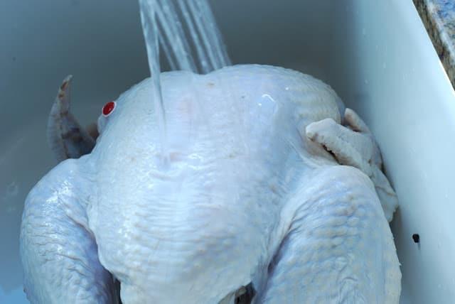 17 1 - Turkey Brine