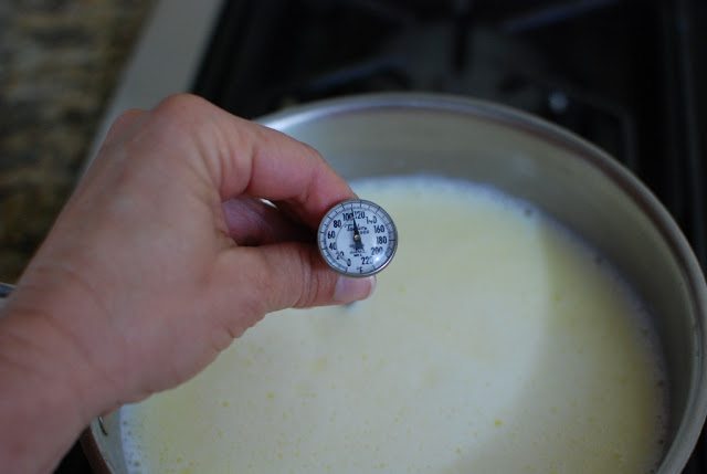 instant read thermometer in milk