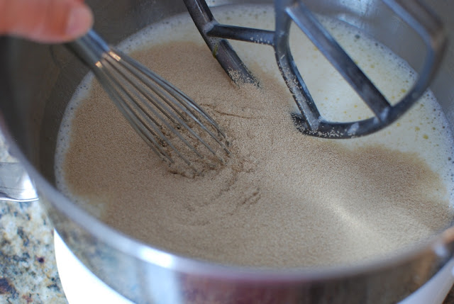 yeast whisked into milk and egg mixture