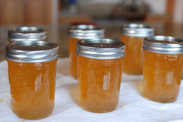 39 - Habanero Ginger Jelly