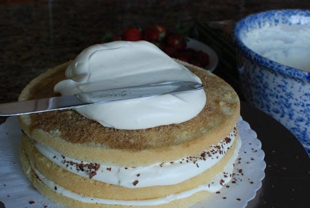 32 3 - Tiramisu Cake