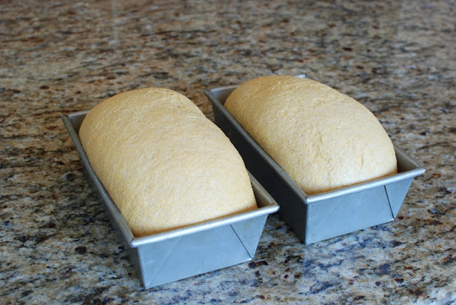 29 2 - Anadama Bread