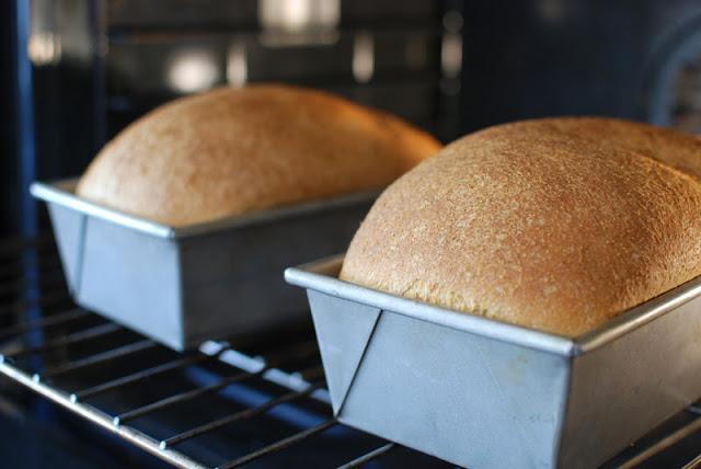 Bread in oven baking