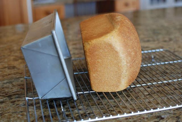 31 1 - Anadama Bread