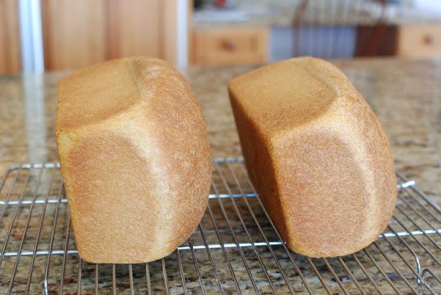 32 1 - Anadama Bread