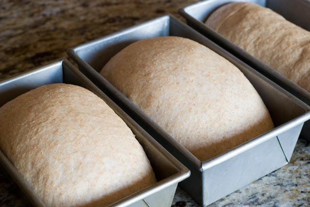 30 1 - Whole Wheat Cinnamon Swirl Bread