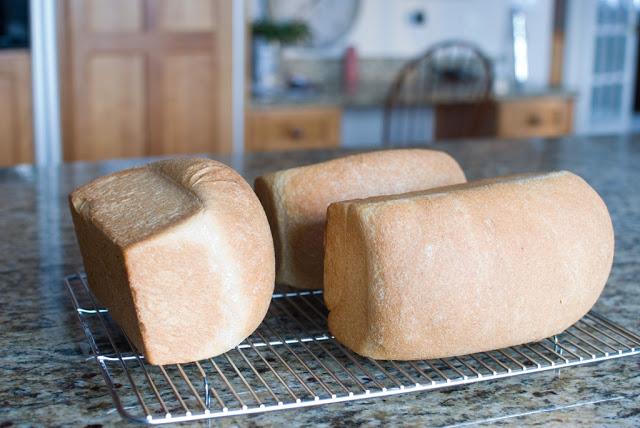 33 - Whole Wheat Cinnamon Swirl Bread