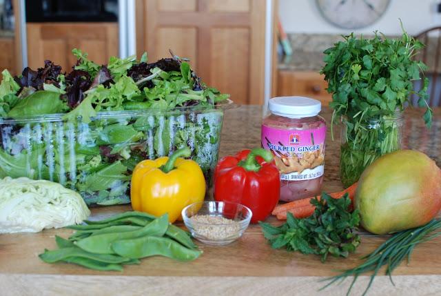 27 1 - Beef Soba Noodle Salad with Mango Ginger Dressing