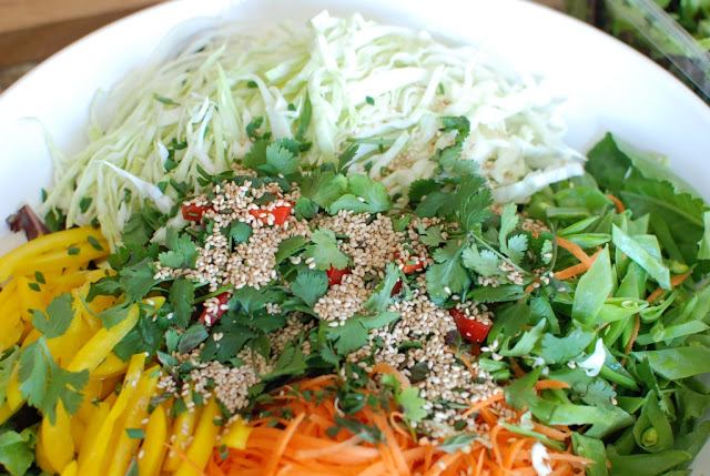 36 1 - Beef Soba Noodle Salad with Mango Ginger Dressing