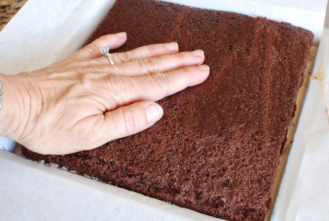 55 - Chocolate Hazelnut Gelato Cake