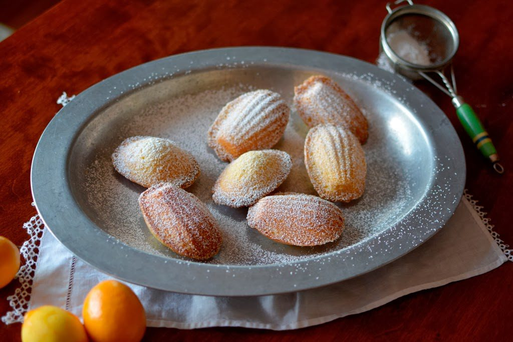 1 1 1024x683 - Meyer Lemon Madeleines