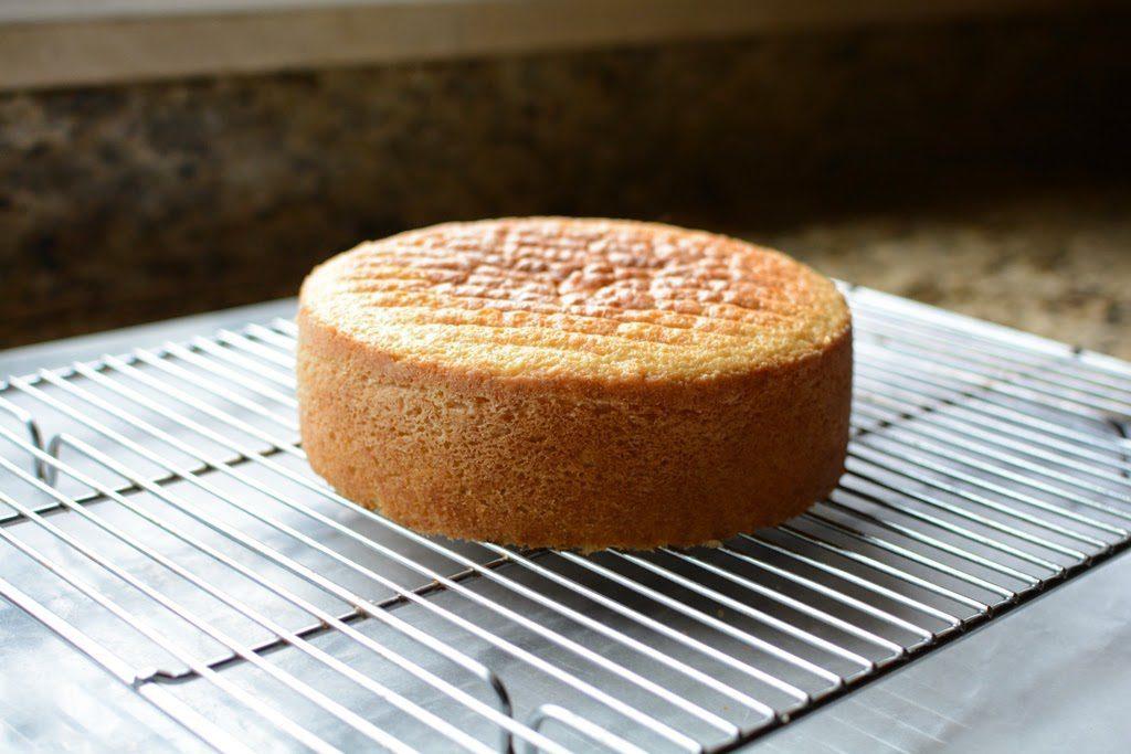 26 1 1024x683 - Lemon Olive Oil Cake with Mascarpone and Lemon Curd