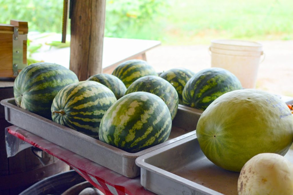 10b 2 1024x682 - Farm Stand Kale and Quinoa Salad