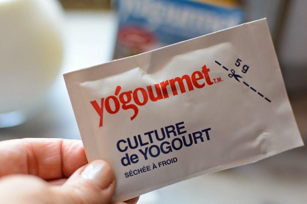 2 4 1024x683 - The Lazy Way of Making Yogurt, Greek Yogurt, and a Giveaway.