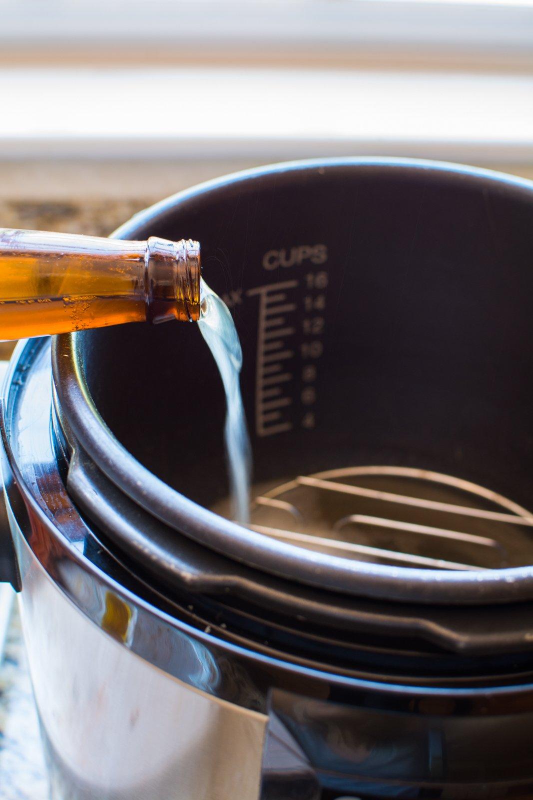 DSC 0201 - Apricot Ginger Beer Glazed Ribs