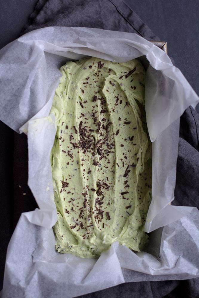 DSC 0082 - Spring Mint Chip Ice Cream