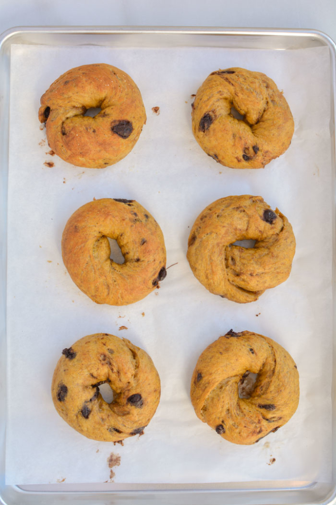 pumpkin bagels on baking sheet